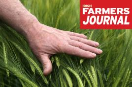 farmers journal hand