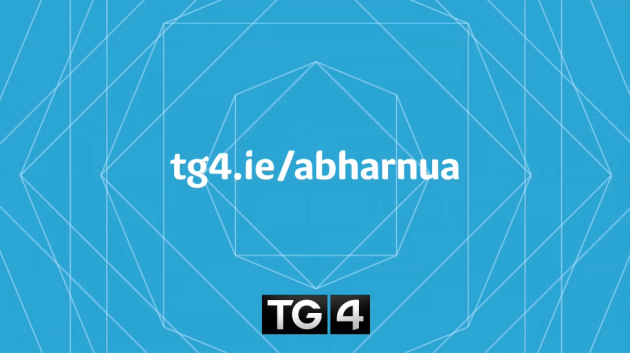 tg4-new-projects